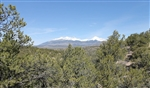 Colorado, Costilla County, 5.28 Acres Sangre De Cristo Ranches. TERMS $190/Month