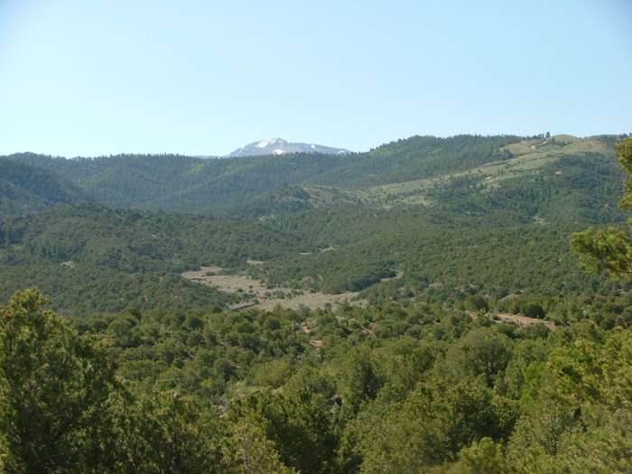 76.55Ac-Close to town & Mtn Views-Seller Financing