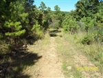Oklahoma, Latimer  County, 5 Acre Pine Mountain Ranch. TERMS $185/Month