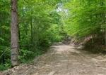 Kentucky, Casey County, 11.90 Acre Laurel Ridge, Lot 1. TERMS $590/Month