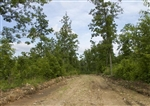 15% OFF: Missouri, Shannon County, 10.94 Acre Thunder Mountain Ranch, Lot 41. TERMS $240/Month